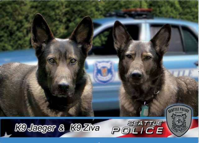 Twin Officers Collar Suspects After Dogged Pursuits
