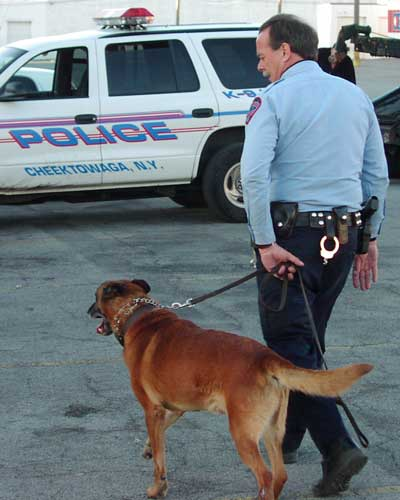 police-dog-13