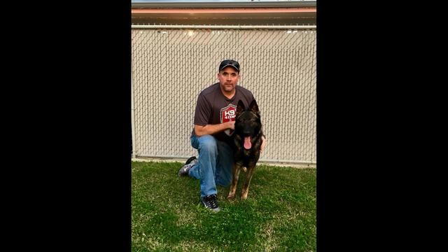 Ohio Police Officer Ryan Davis lost his K9 partner Jethro in the line of duty. He is shown with his new partner, Tuko granted by K9s4COPs. Photo courtesy of Fox 26 Houston