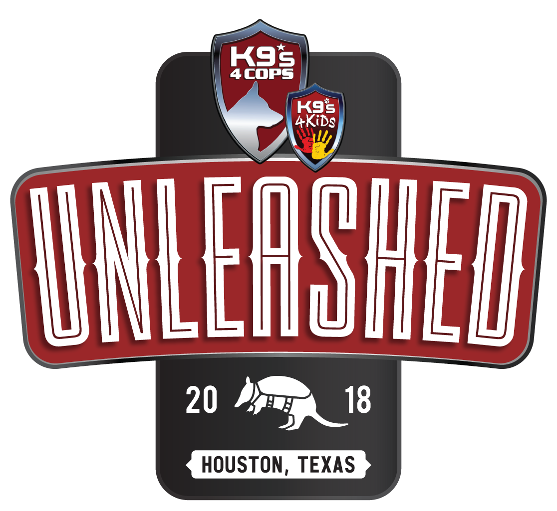 unleash logo-04